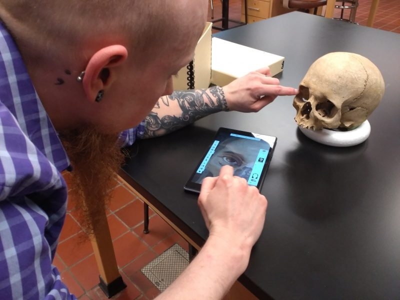 Studying skeletal remains for approximation at the University of New Hampshire